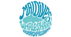 Makdives Whaleshark Research