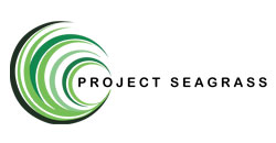 Project Seagrass ~ #ProtectMaldivesSeagrass